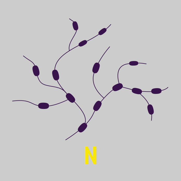 BK-Content-TNM-System-Lymphsystem-dunkel
