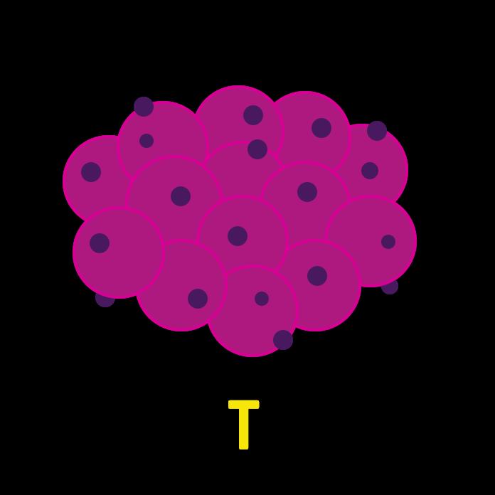 BK-Content-TNM-System-Tumorgroesse-dunkel