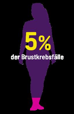 5% der Brustkrebsfälle